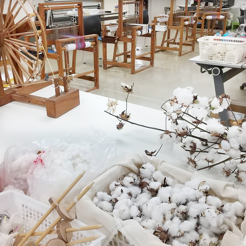 糸車・機織り機・収穫した綿花